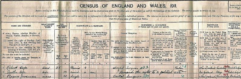 suffragette 1911 census family history genealogy
